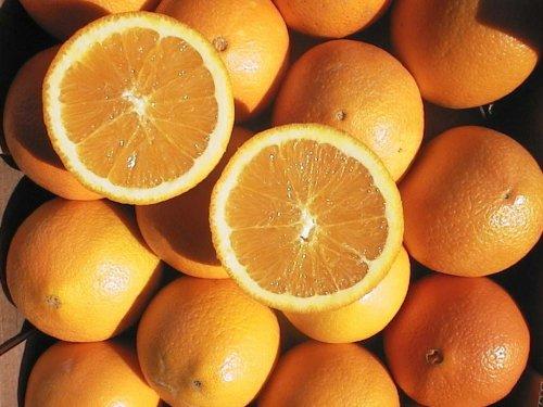 arancianavel
